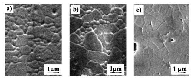 堇青石-莫来石材料的微观结构
